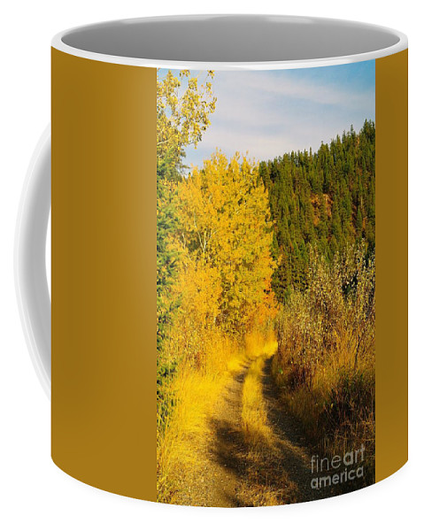 Autumn Coffee Mug featuring the photograph An October Path  by Jeff Swan