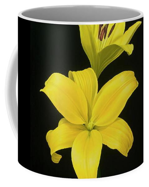 Lilies Coffee Mug featuring the painting Anastacias Lilies by Gary Hernandez