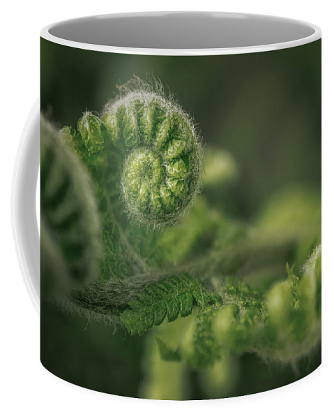 Nature Coffee Mug featuring the pyrography Ancient Forest by Hanna Tor