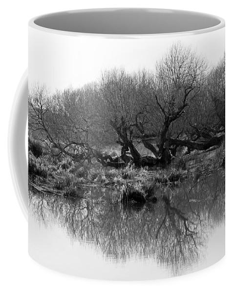 Trees Coffee Mug featuring the photograph Ancient Pollard Trees by Bob Kemp