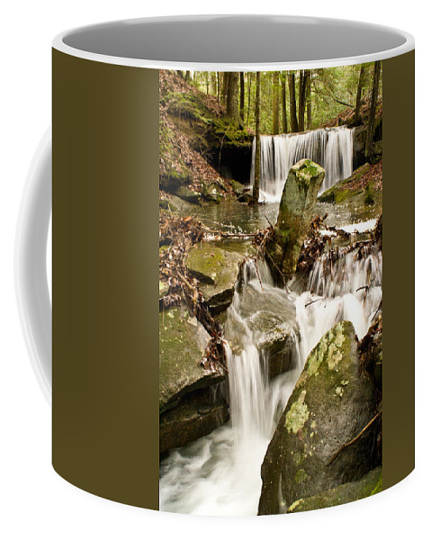 Stream Coffee Mug featuring the photograph Ancient Stream by Douglas Barnett