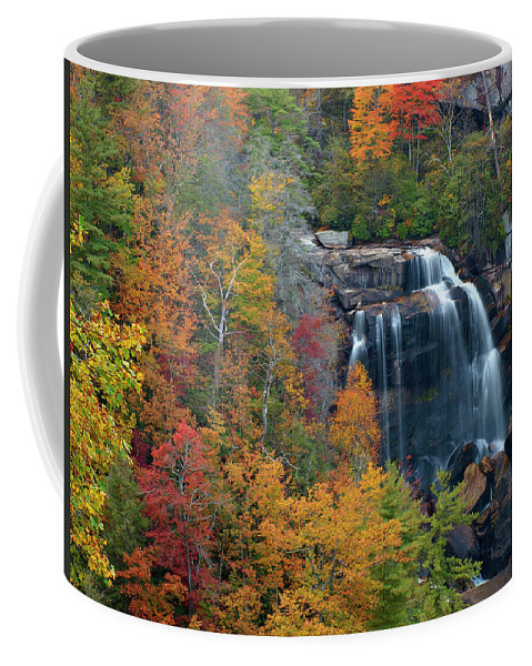 Waterfall Coffee Mug featuring the photograph And The Leaves Will Fall by J K York