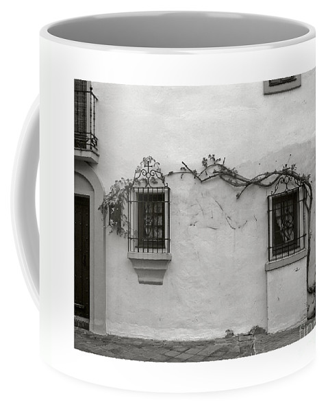 Andalucia Coffee Mug featuring the photograph Andalucia Wall by Thomas Marchessault