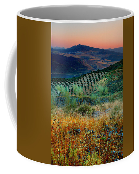 Andalucia Coffee Mug featuring the photograph Andalucian Landscape by Mal Bray