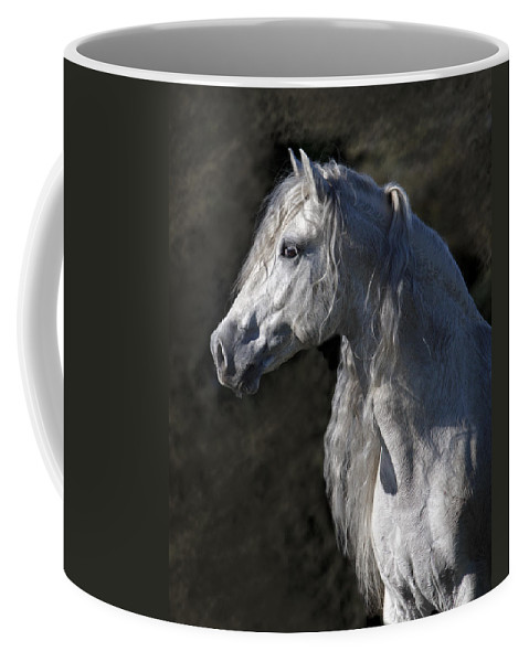 Andalusian Portrait Coffee Mug featuring the photograph Andalusian Portrait by Wes and Dotty Weber