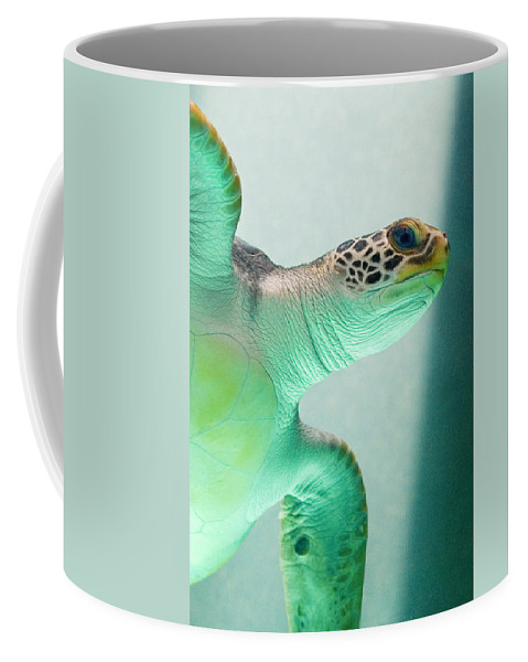 Skip Hunt Coffee Mug featuring the photograph Angel 2 by Skip Hunt