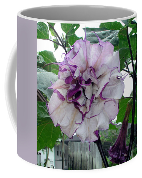 Angel Coffee Mug featuring the photograph Angel by Allan Hughes