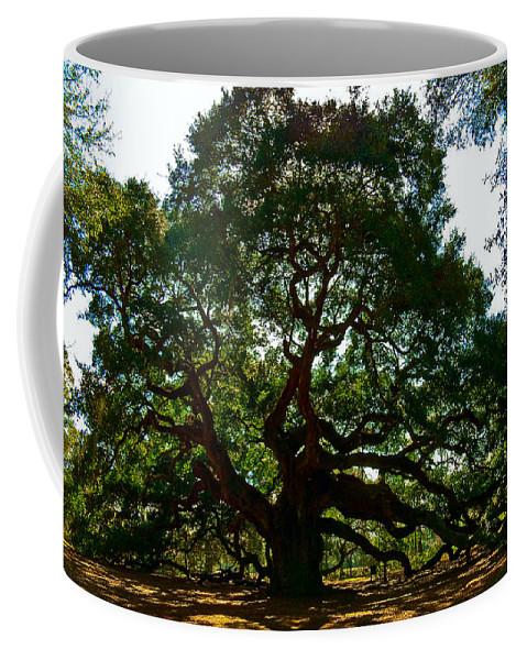Tree Coffee Mug featuring the photograph Angel Oak Tree 2004 by Louis Dallara