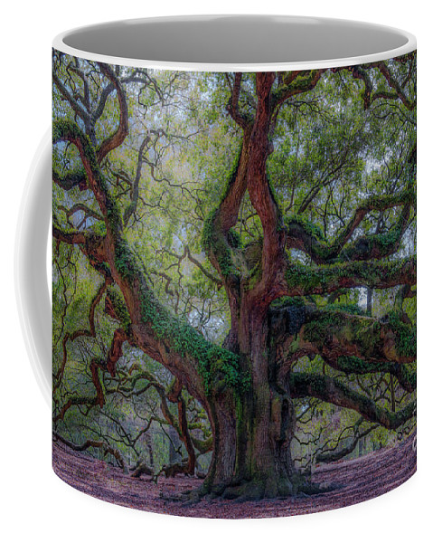 Angel Oak Tree Coffee Mug featuring the photograph Angel Oak Tree Deeply Rooted History by Dale Powell