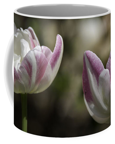 Flowers Coffee Mug featuring the photograph Angelique Peony Tulips 2 by Teresa Mucha