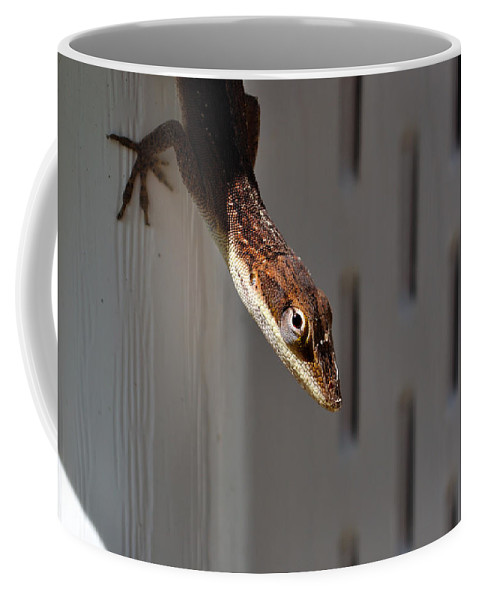 Animal Coffee Mug featuring the photograph Anole by Kenneth Albin