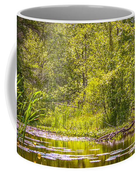 Summer Coffee Mug featuring the photograph Another Day At The Lake by Claudia M Photography