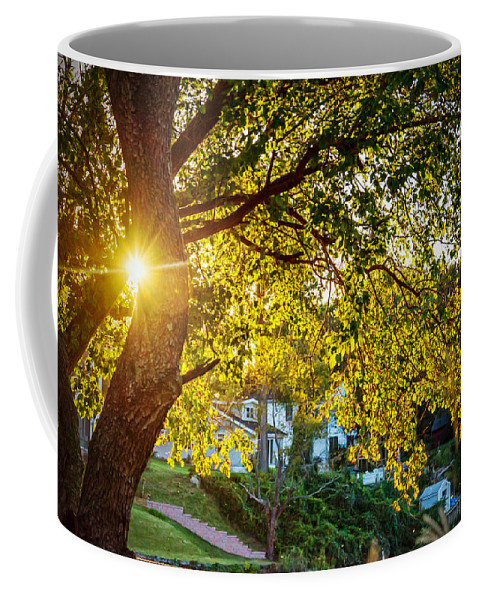 2d Coffee Mug featuring the photograph Another Day In Paradise by Brian Wallace