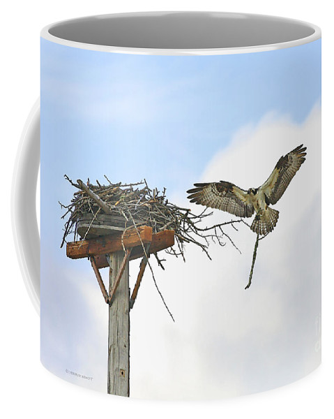 Osprey Coffee Mug featuring the photograph Another Twig For The Nest by Deborah Benoit