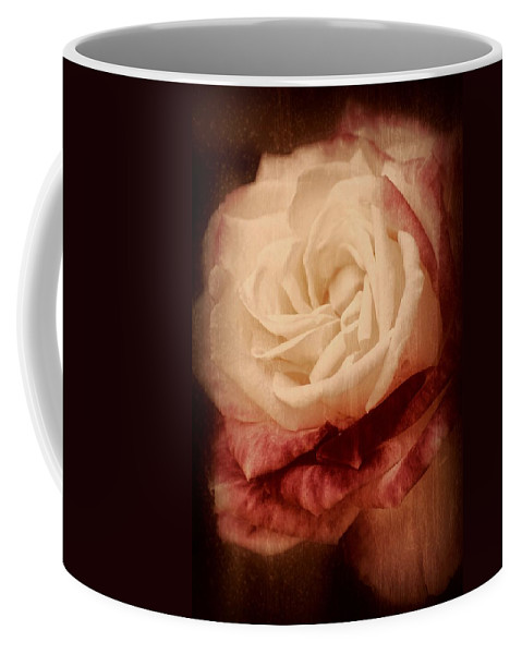Roses Coffee Mug featuring the photograph Antique Rose - In Full Bloom by Angie Tirado