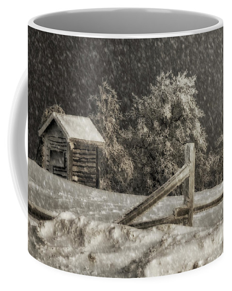 Shed Coffee Mug featuring the photograph Any Port In A Storm by Lois Bryan