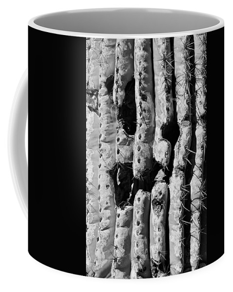 Cactus Coffee Mug featuring the photograph Anybody Home? by Ronda Korbelik