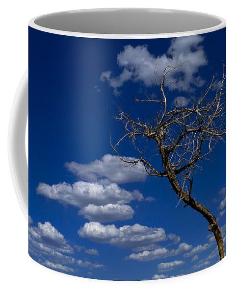 Apparition Coffee Mug featuring the photograph Apparition by Skip Hunt