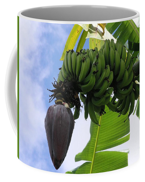 Green Coffee Mug featuring the photograph Apple Bananas by Mary Deal