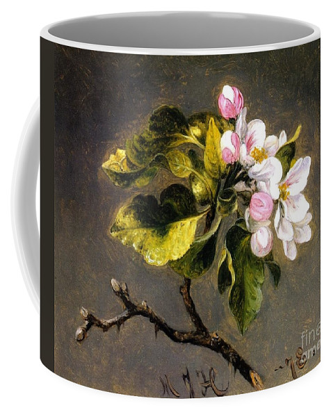 Apple Blossomss - Martin Johnson Heade Coffee Mug featuring the painting Apple Blossomss by MotionAge Designs