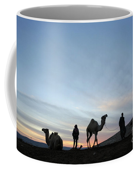Middle East Coffee Mug featuring the photograph Arabian Camel At Sunset by PhotoStock-Israel