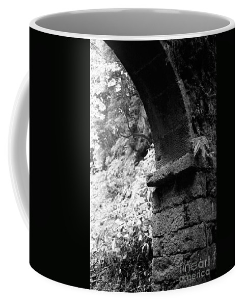Arc Coffee Mug featuring the photograph Arc by Gaspar Avila