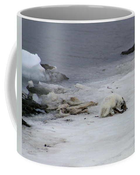 Arctic Fox Coffee Mug featuring the photograph Arctic Fox Eating by Anthony Jones