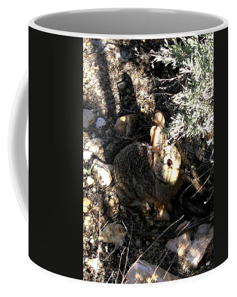 Arizona Coffee Mug featuring the photograph Arizona 13 by Will Borden