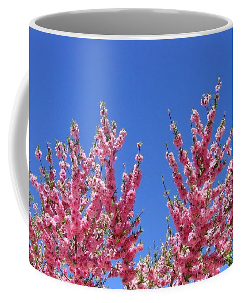 Arizona Coffee Mug featuring the photograph Arizona 3 by Will Borden