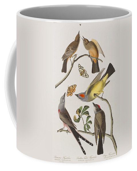 Butterfly Coffee Mug featuring the painting Arkansaw Flycatcher Swallow-tailed Flycatcher Says Flycatcher by John James Audubon