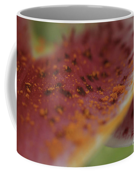 Lilly Coffee Mug featuring the photograph Art In The Lilly by Deborah Benoit