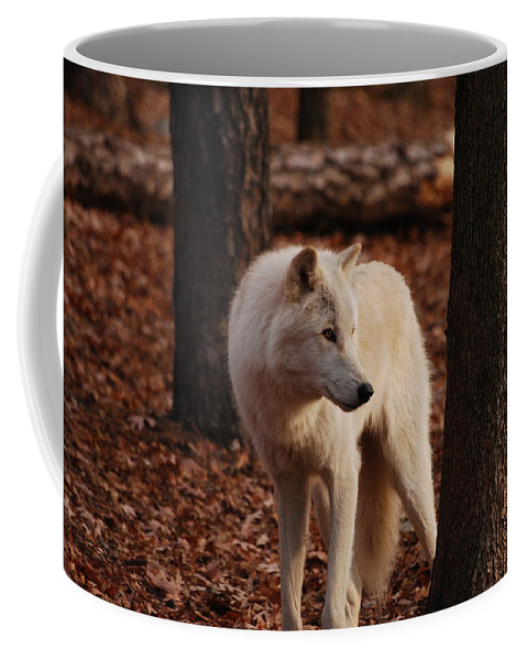 Wolf Coffee Mug featuring the photograph Artic Wolf by Lori Tambakis