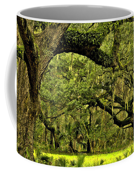 Tree Coffee Mug featuring the photograph Artistic Live Oaks by Phill Doherty