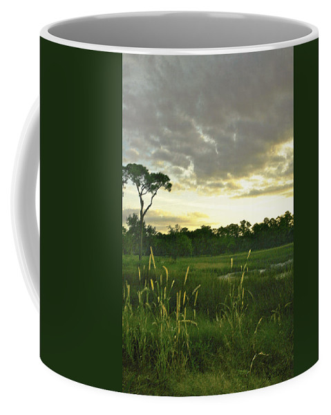 Sunrise Coffee Mug featuring the photograph Artistic Lush Marsh by Phill Doherty