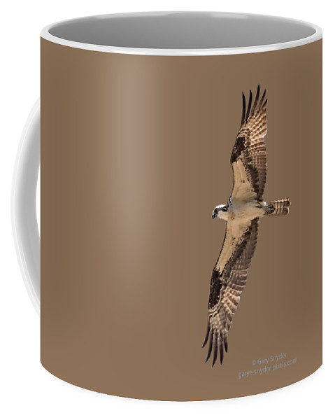 Osprey Coffee Mug featuring the photograph Osprey In Flight At Sunset by Gary E Snyder