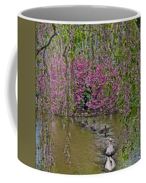 Swan Coffee Mug featuring the photograph Asian Spring by Chris Lord