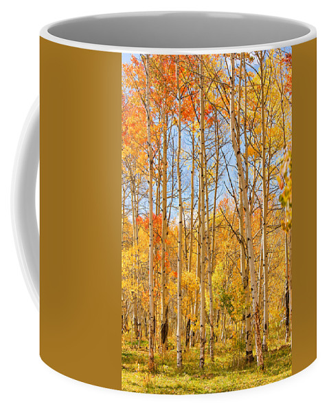 Autumn Coffee Mug featuring the photograph Aspen Fall Foliage Vertical Image by James BO Insogna