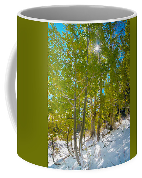 Aspen Coffee Mug featuring the photograph Aspens At Pine Creek Basin by Michele James