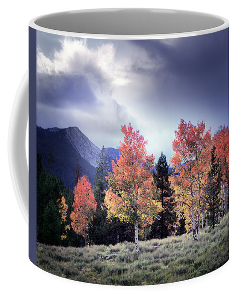 Photography Coffee Mug featuring the photograph Aspens In Autumn Light by Leland D Howard