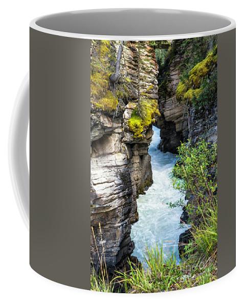Alberta Coffee Mug featuring the photograph Athabaska River Slot Canyon by Daryl L Hunter