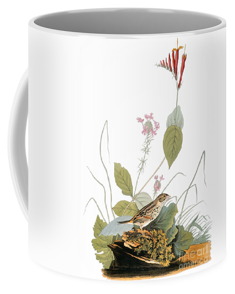 1838 Coffee Mug featuring the photograph Audubon: Bunting by Granger