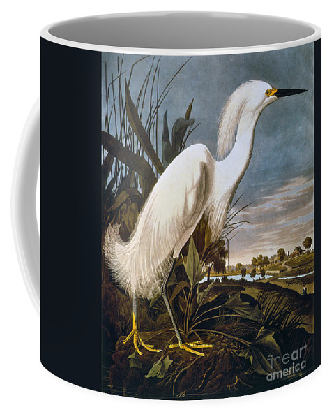 1838 Coffee Mug featuring the photograph Audubon: Egret by Granger