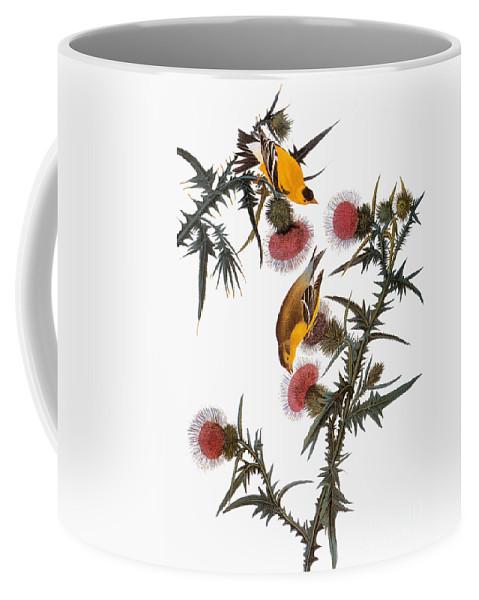 1838 Coffee Mug featuring the photograph Goldfinch by John James Audubon