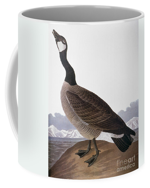 1827 Coffee Mug featuring the photograph Audubon: Goose, 1827 by Granger