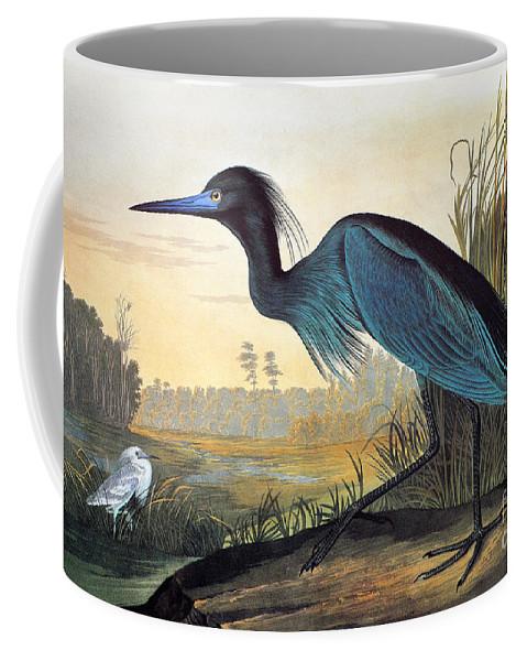 1827 Coffee Mug featuring the photograph Little Blue Heron by John James Audubon