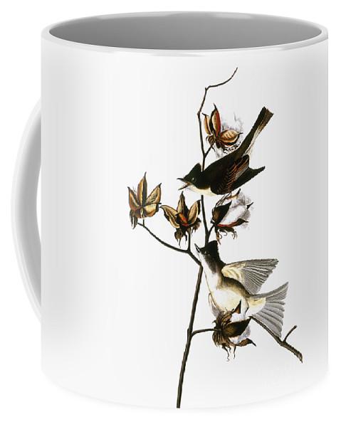 1838 Coffee Mug featuring the photograph Audubon: Phoebe by Granger