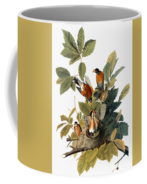 1838 Coffee Mug featuring the photograph Audubon: Robin by Granger