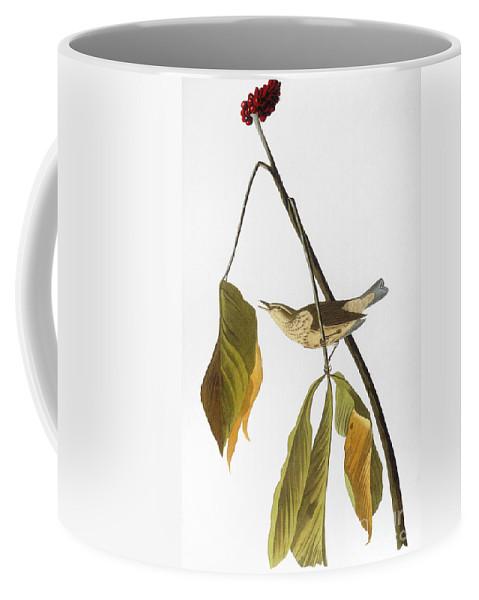 1827 Coffee Mug featuring the photograph Audubon: Thrush, 1827 by Granger