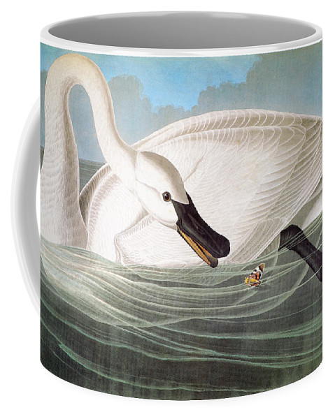 1827 Coffee Mug featuring the photograph Audubon: Trumpeter Swan by Granger