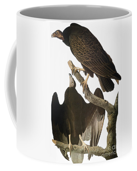 1827 Coffee Mug featuring the photograph Audubon: Turkey Vulture by Granger